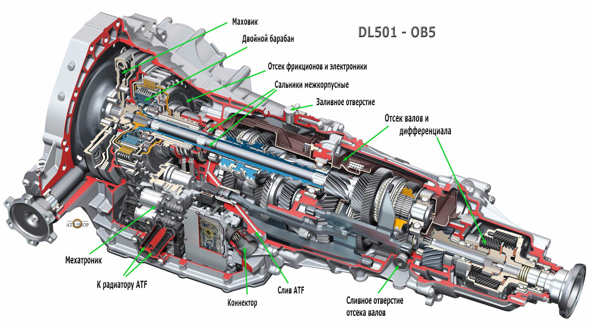 DL501 - OB5 в разрезе