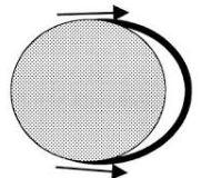 Тест кольца